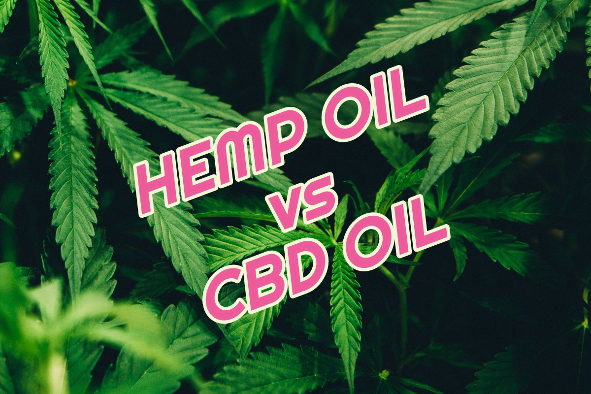 hemp-oil-vs-cbd-oil