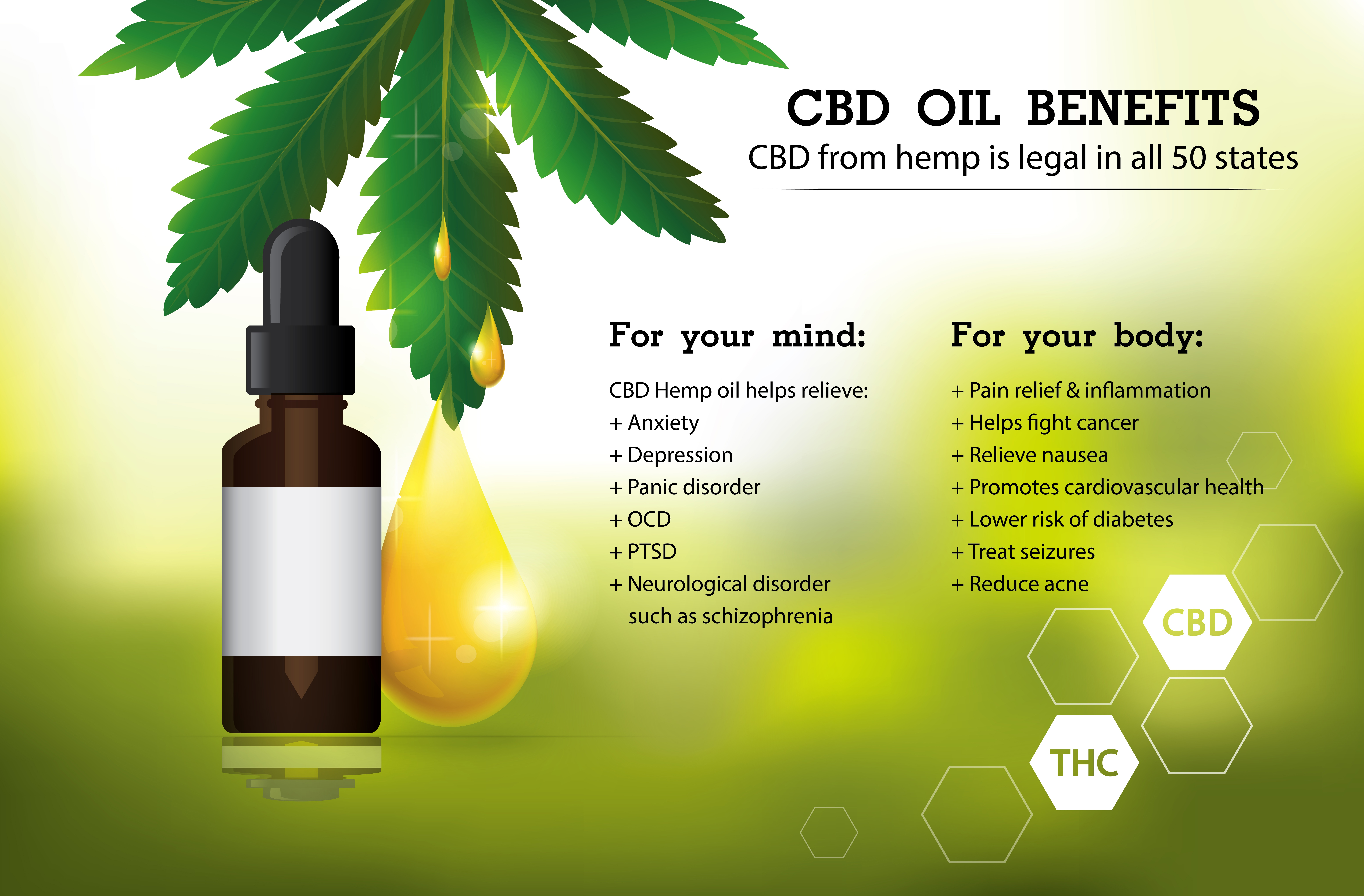 Hemp Oil Vs Cbd Oil What S The Difference