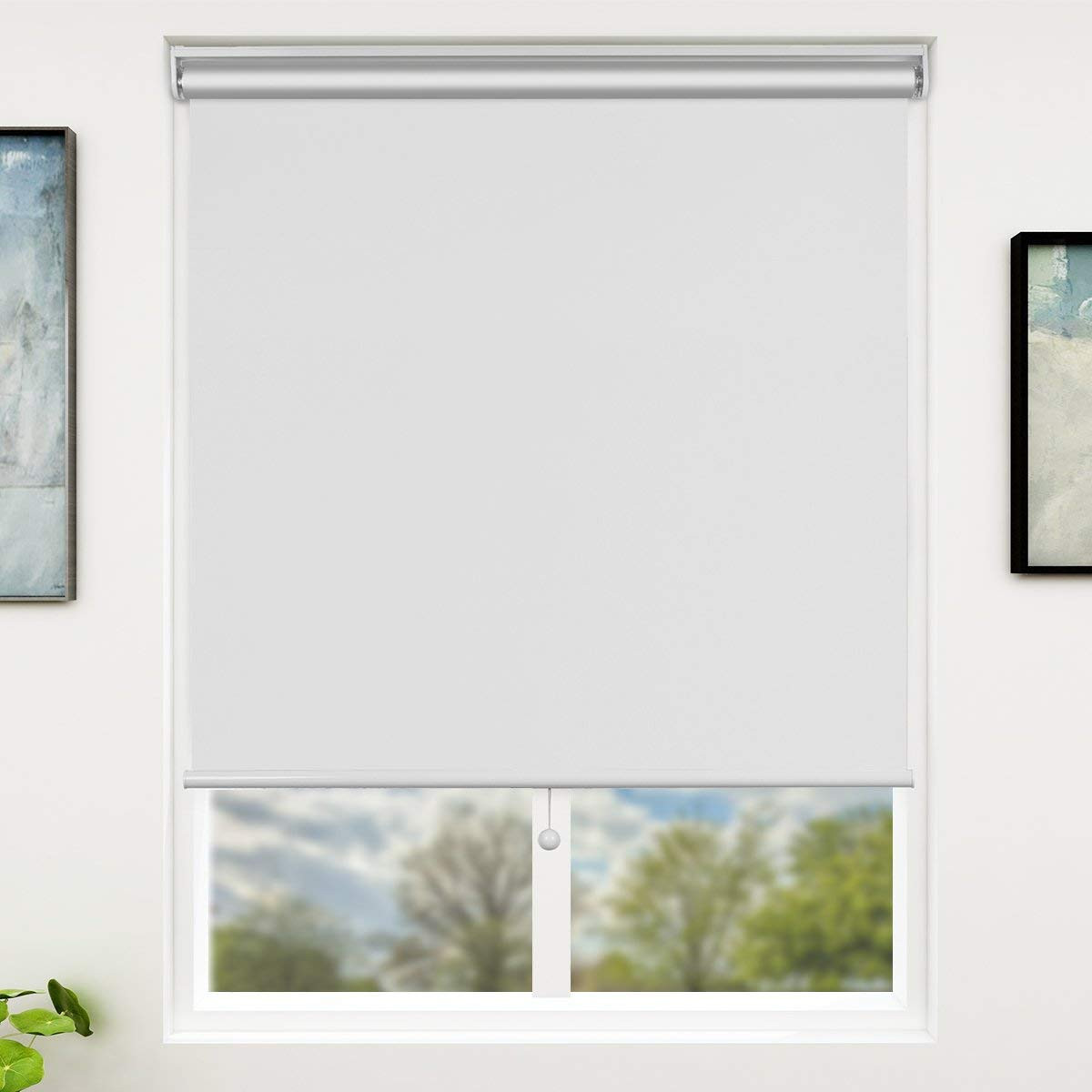 roll-window-blinds