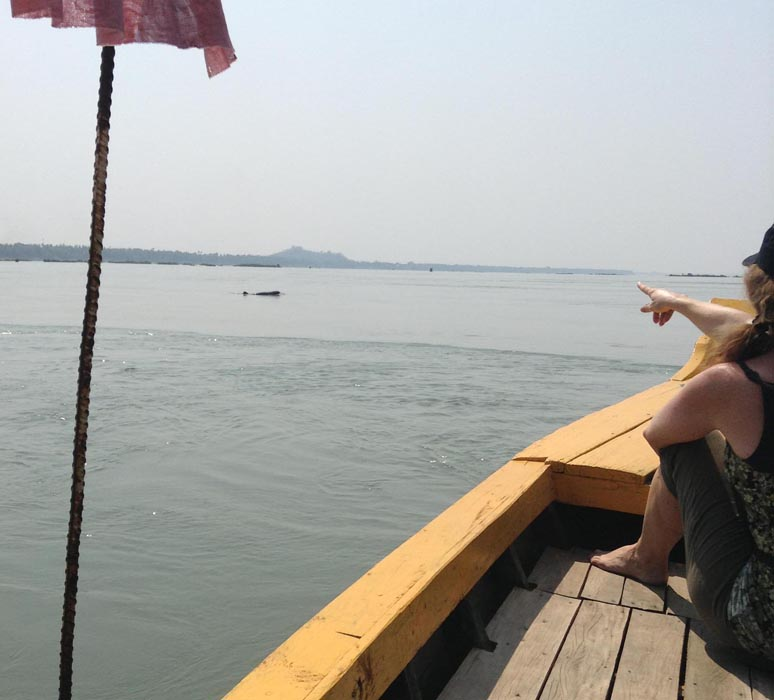 Chasing-Irrawaddy-Dolphins00