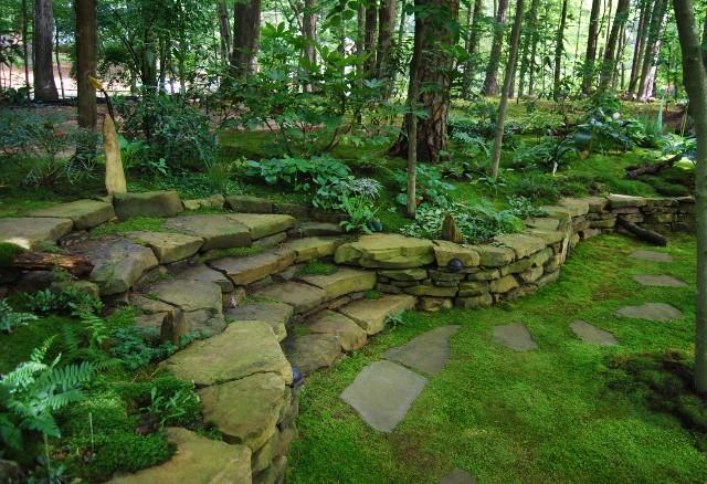 Japanese Garden Front Yard Drought Tolerant