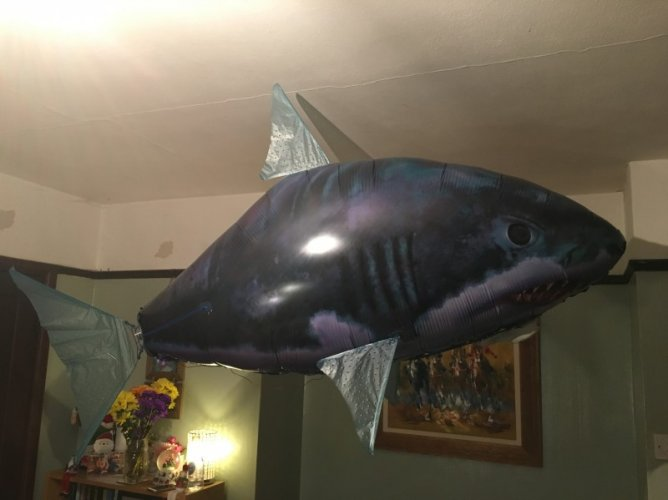 Inflatable Flying Shark