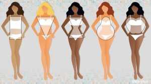 Womens Bodyshapes