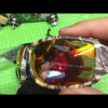 Quickshark Hunting Fishing Sunglasses Part 2